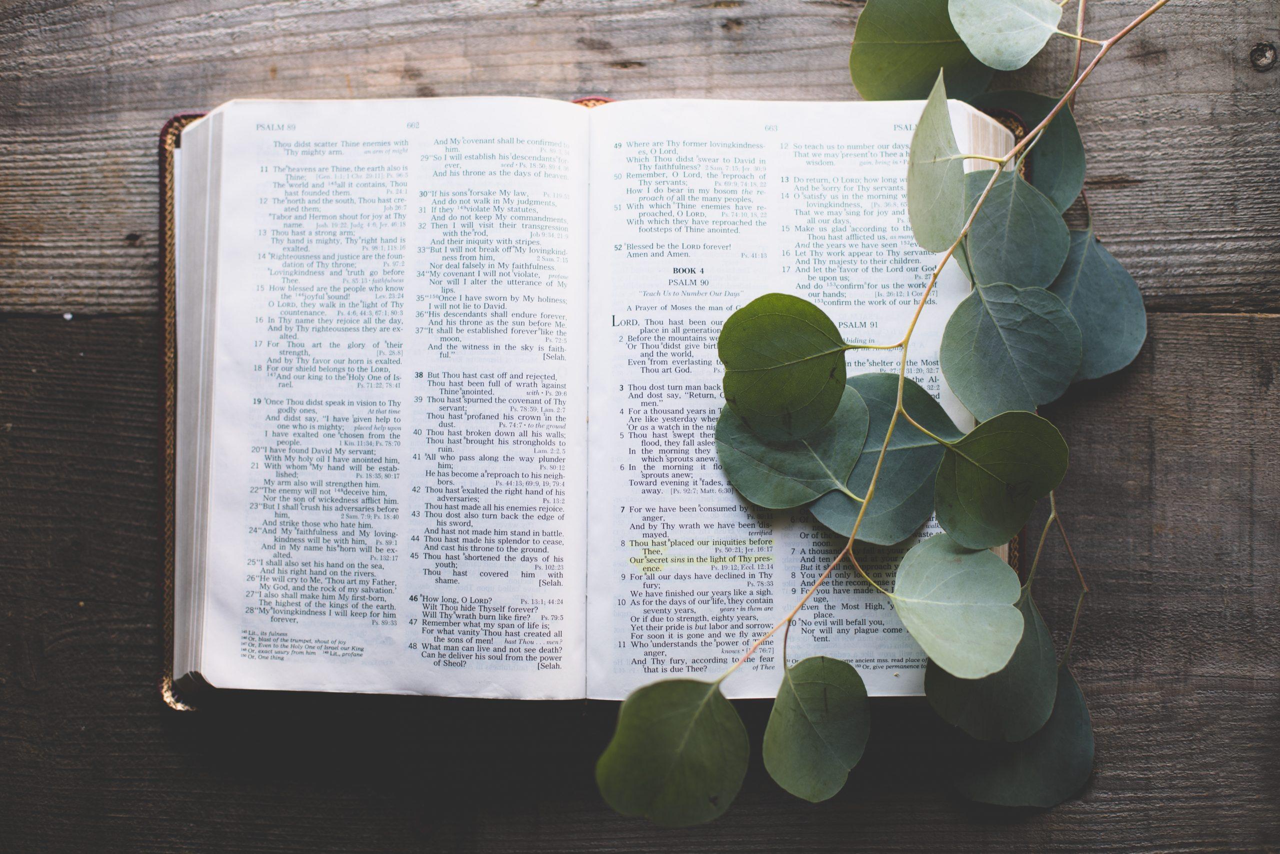 2019년 12월15일 말씀의 삶 성경공부 수료식