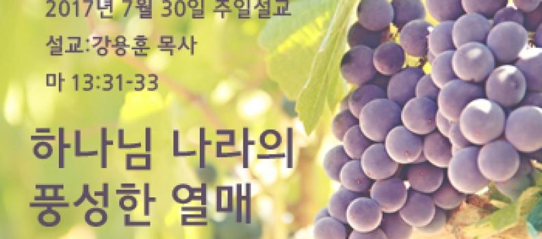 하나님 나라의 풍성한 열매 – 마 13:31-33
