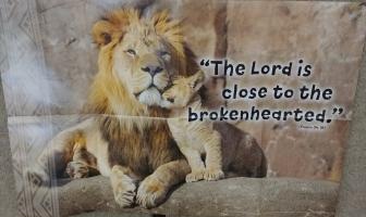 2019년 여름성경학교 (7/22 – 7/26, 월 – 금)
