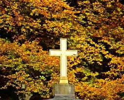 2019년 11월24일 추수감사주일 예배와 세례식